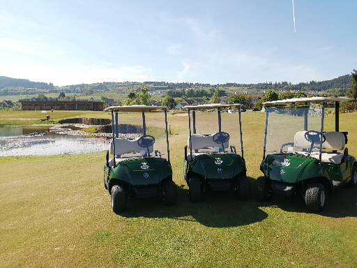 Buggies Kings Golf Club