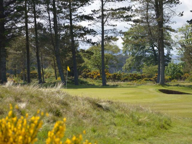 Golspie Golf Club 8th