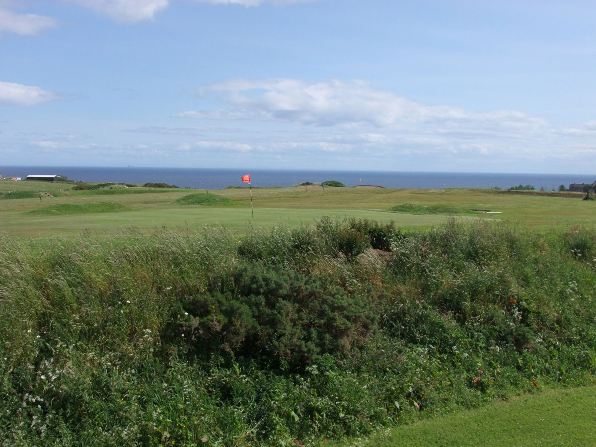 Lybster Golf Club - sea view
